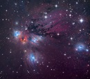 The reflection nebula NGC 2170