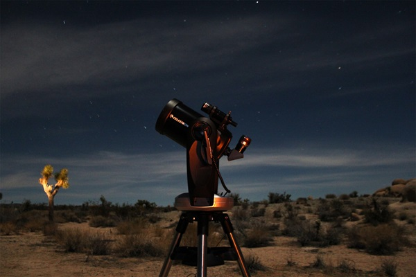What to Bring for a Night of Stargazing: The Ultimate Guide