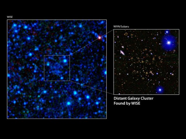 Distant-galaxy-cluster
