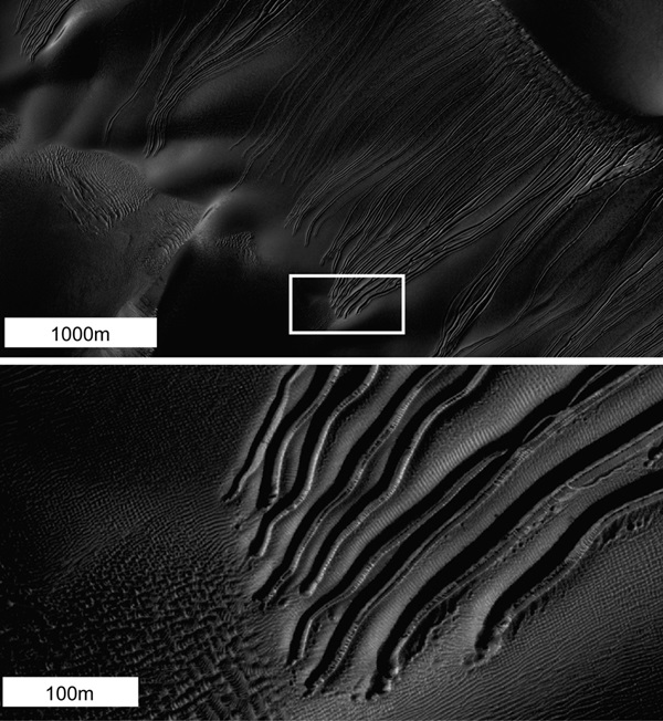 Martian linear gullies caused by dry ice