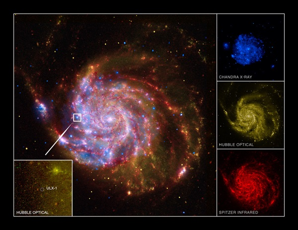extreme black hole in Pinwheel Galaxy