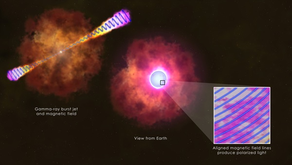 Gamma-ray burst jet's magnetic field