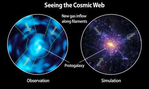 Seeing the cosmic web