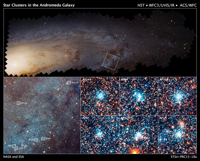 Stars and star clusters in the Andromeda Galaxy