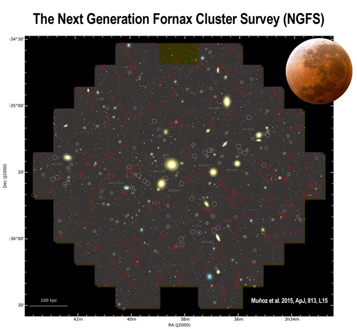 Next generation Fornax cluster survey
