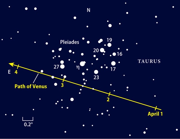Path-of-Venus-finder-chart
