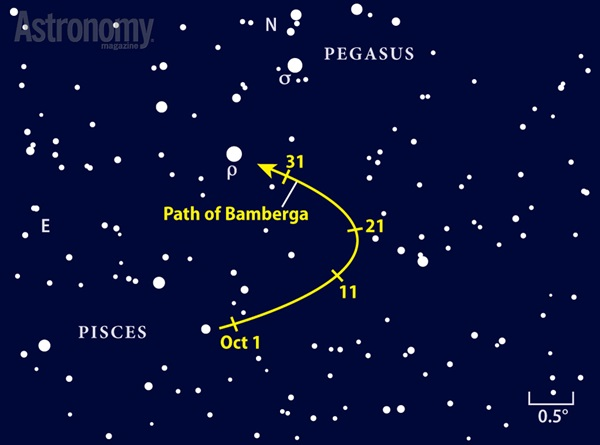 Path of Bamberga finder chart