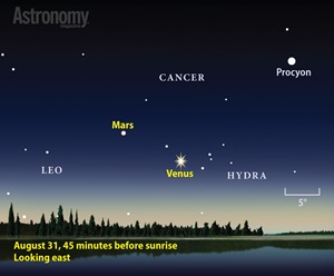 The predawn sky comes alive with planets in late August. Both Venus and Mars emerge from the Sun's glare to start long morning apparitions.