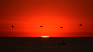 Atmospheric refraction of the top of the Sun's disk sometimes creates a vivid green flash if the observer's horizon is low enough and distant enough.