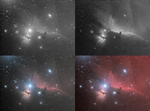 Horsehead Nebula (Barnard 33) in the constellation Orion