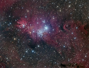 This image shows an extremely rich and colorful area in the constellation Monoceros the Unicorn.