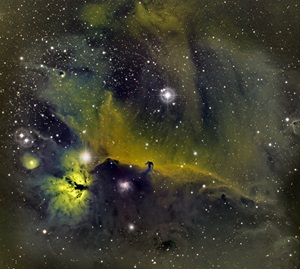 This narrowband image shows the Horsehead Nebula (Barnard 33) surrounded by colorful gas clouds — only the colors are not ones we're used to.