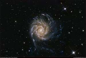 "Spiral galaxy M101 in the constellation Ursa Major the Great Bear was one of the first objects cataloged as a ""spiral nebula."