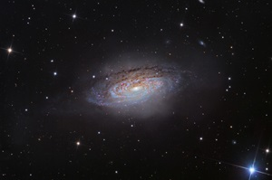 Spiral galaxy NGC 3521 floats through space in the constellation Leo the Lion.