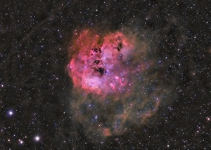 IC 410 an emission nebula about 12,000 light-years from Earth in the constellation Auriga the Charioteer.