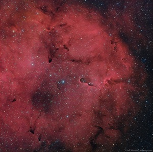 The Elephant Trunk Nebula in IC 1396