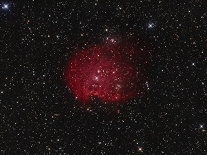 The Monkey Head Nebula in Gemini