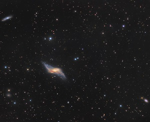 The distorted spiral galaxy NGC 660
