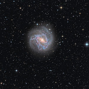 The grand spiral galaxy M83