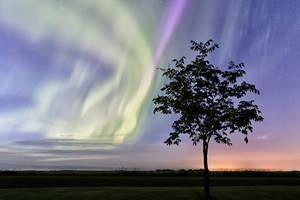 A midsummer night aurora