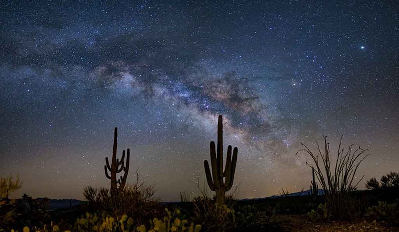 The stars above the Sonoran Desert