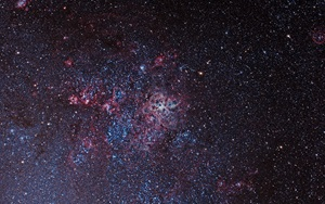 The Tarantula Nebula NGC 2070