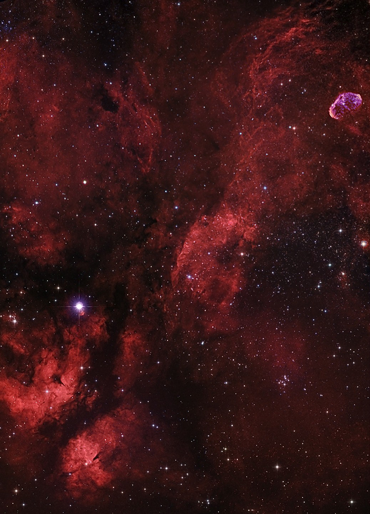 The region of M29 and the Crescent Nebula