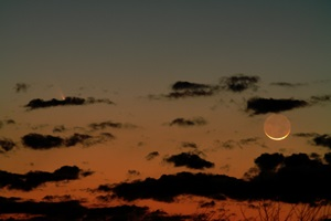 PANSTARRS_March12_Shuster