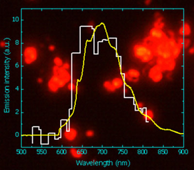 The fluorescence spectrum of nanodiamonds