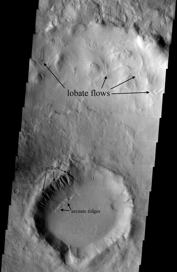 Martian gullies and arcuate ridges