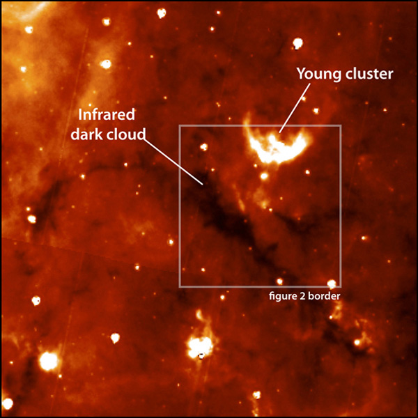 Young stellar clusters