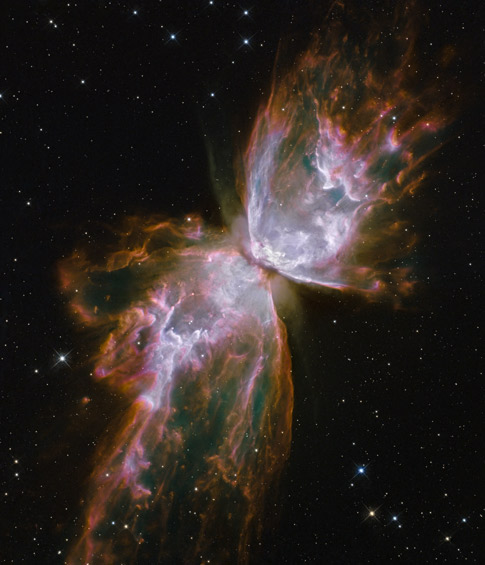 January 2010  gallery-Bug Nebula