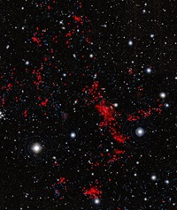Gigantic structure of galaxies
