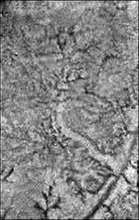 Titan: Extruded ice and methane springs