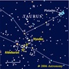 Taurus diagram